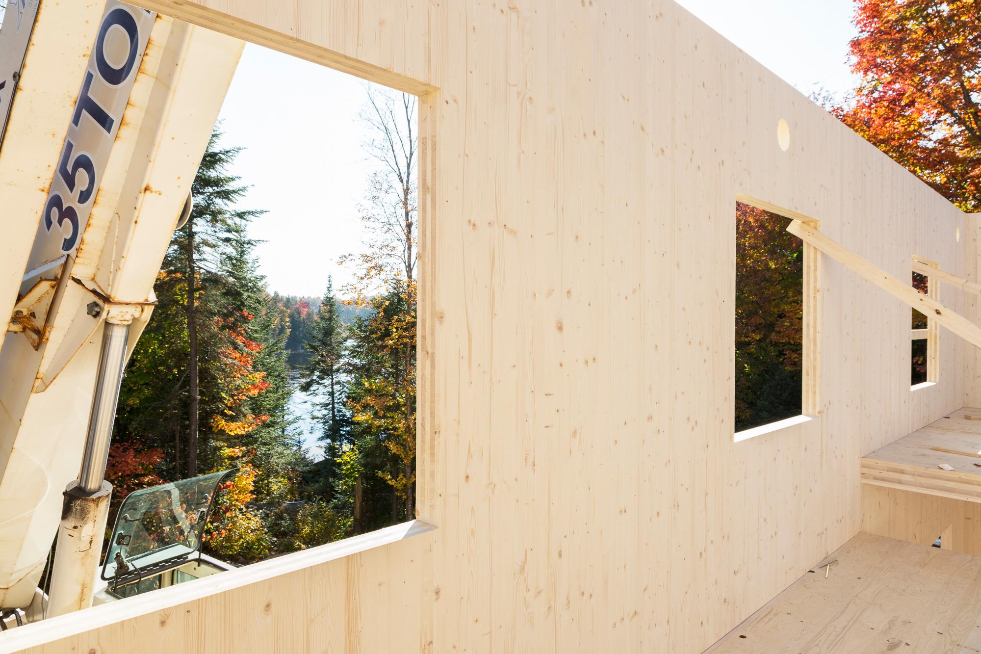 maison en construction murs bois arbres