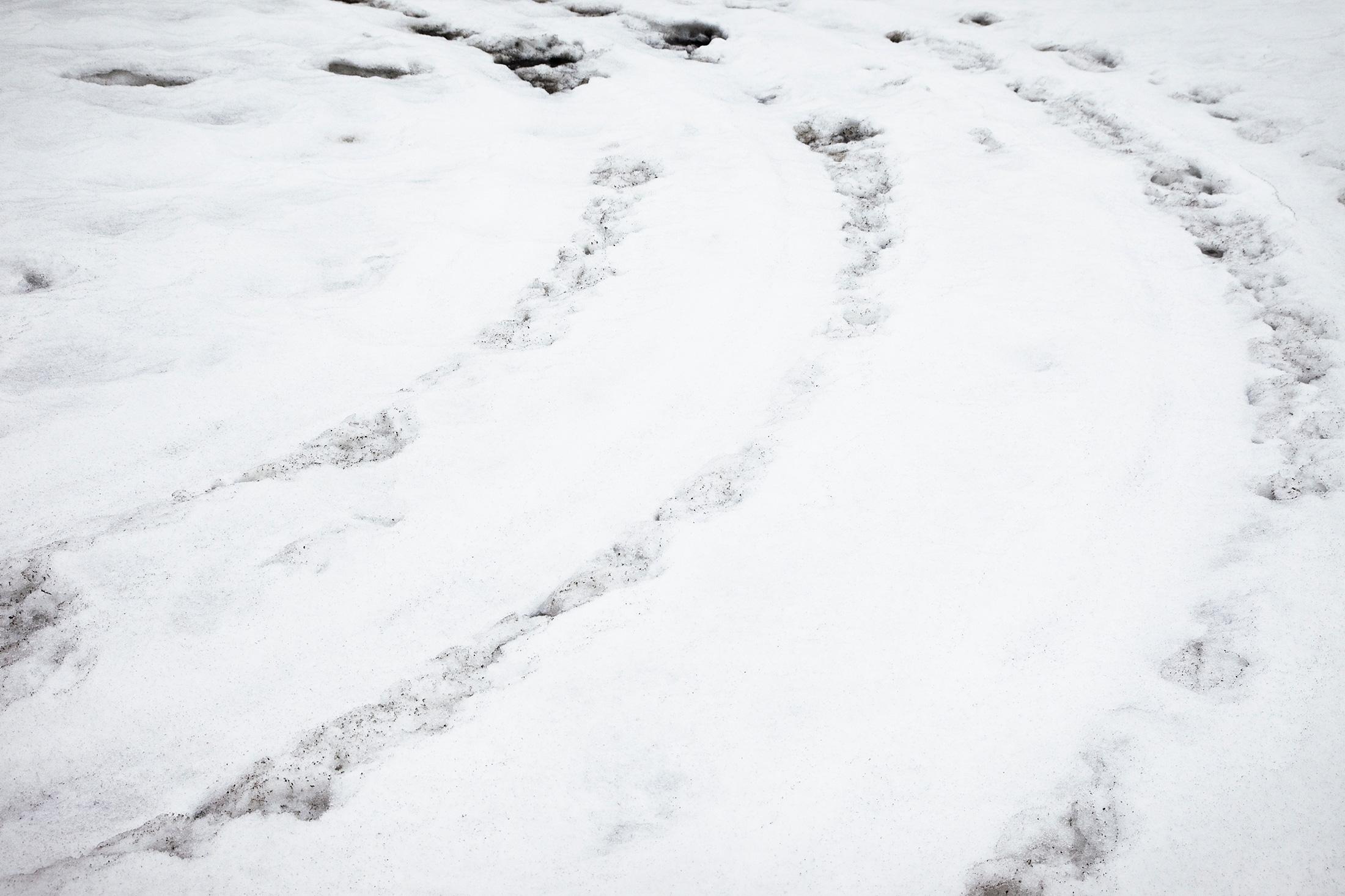 traces auto neige