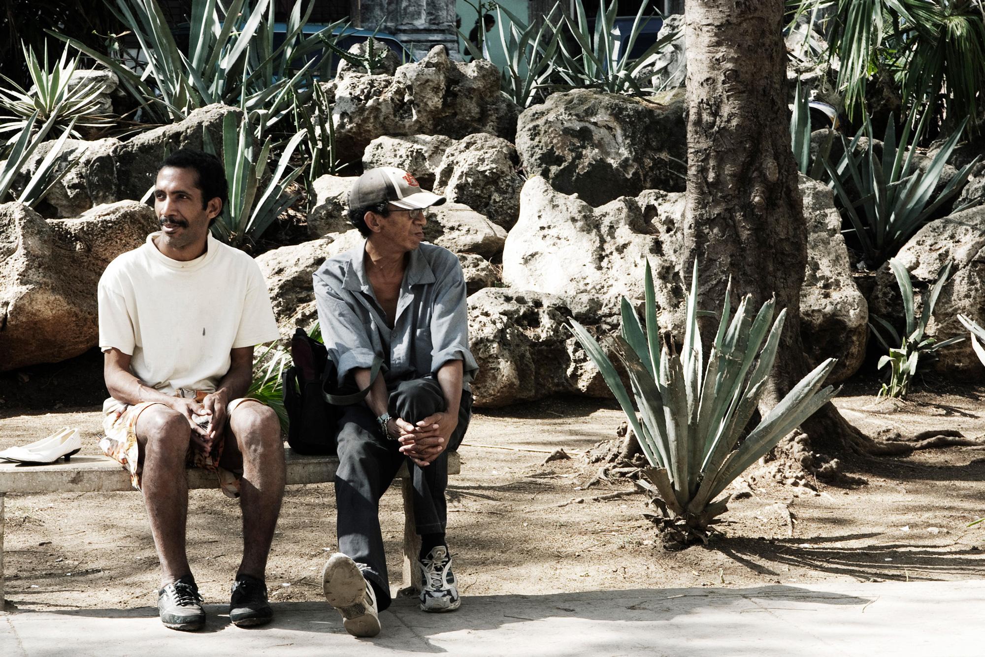 cuba deux hommes banc plantes roches