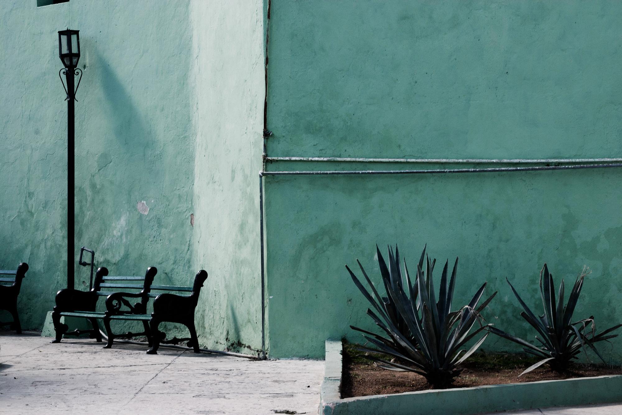 cuba mur vert banc plantes