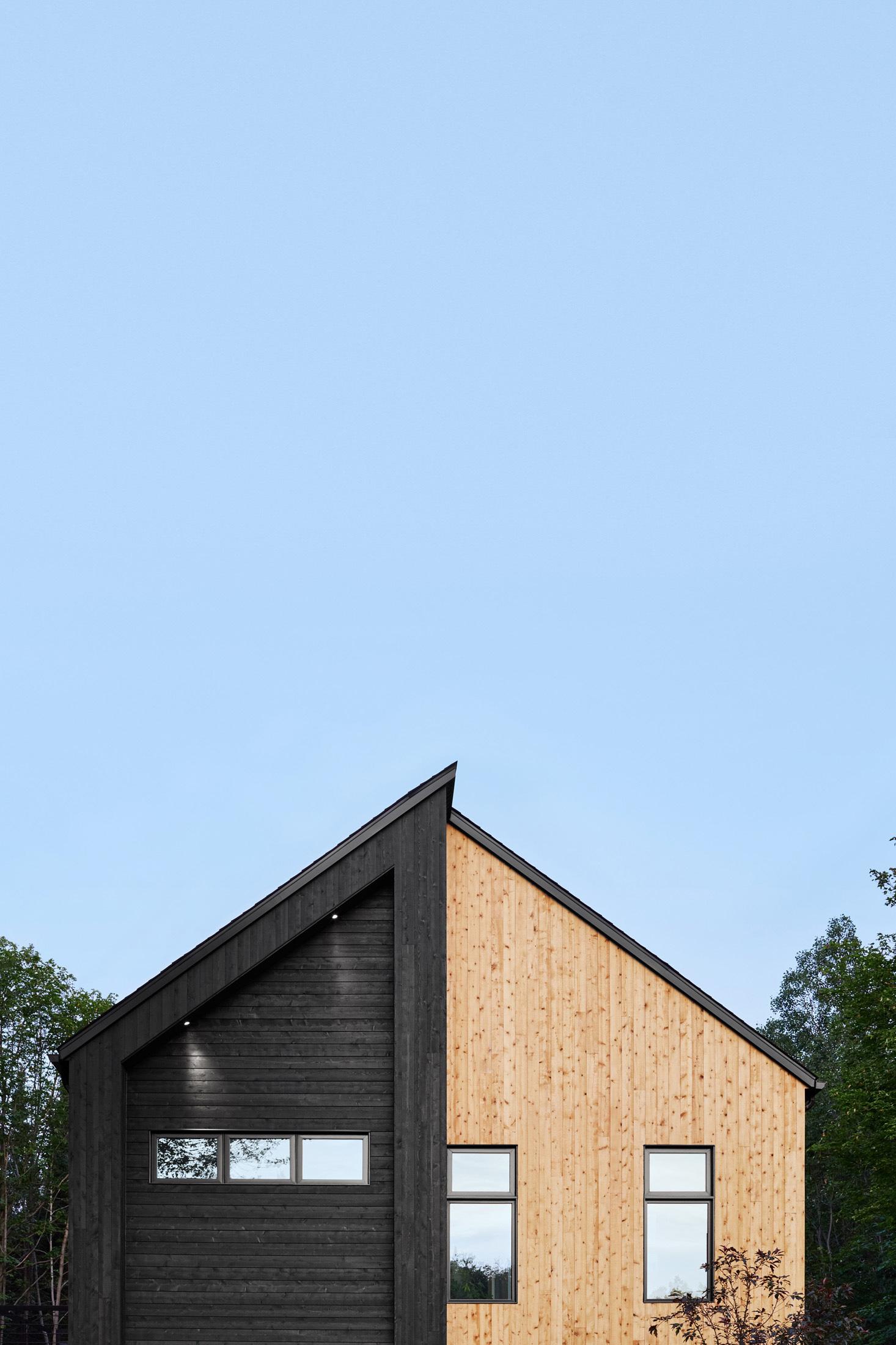 facade maison bois noir cedre naturel